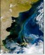 MAR ARGENTINO 2