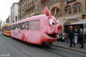Vehículo de la fiebre porcina. De: http://migallinero.blogspot.com/2009_04_01_archive.html
