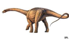 arg 140517034538_sp_dinosaurio_304x171_spl